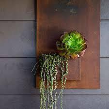 Houston Urban Gardeners - 60 best houston gardening images on pinterest houston early