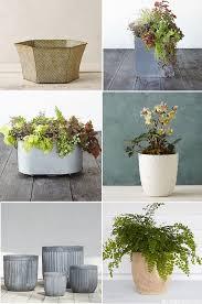 Decorative Indoor Planters Decorative Tabletop Planters For Houseplants