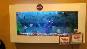wall mounted aquarium supply in singapore youtube