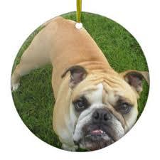 american bulldog ornaments keepsake ornaments zazzle