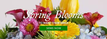 flower delivery las vegas las vegas florist flower delivery by sun city summerlin florist