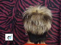 pic of back of spiky hair cuts how to cut short and spikey hair with longer back hairstyles