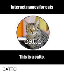 Internet Meme Names - 25 best memes about internet names internet names memes