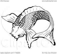 detailed black and white koi fish drawings