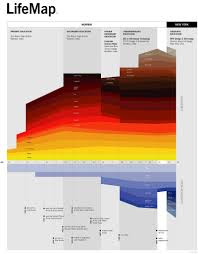 wall decor trendy infographics