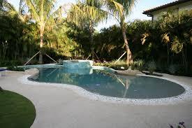 deck level pools custom swimming pool and spas palm beach pool