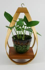 danish modern bent wood hanging planter go green or go home