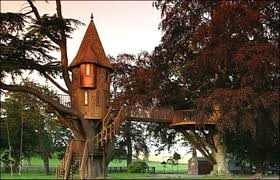 20 Amazing Treehouses  Stuff You Should Know