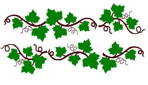 grape leaves pictures free download clip art free clip art