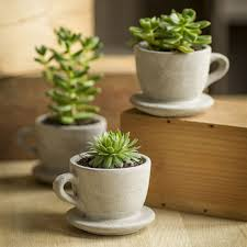 concrete tea u0026 coffee cup pot with attached saucer coffee cup