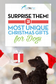17 best christmas gift ideas for dogs that u0027ll surprise you and them