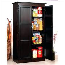 storage cabinets with doors and shelves shallow wood cabinet hafeznikookarifund com