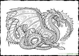 Adult Coloring Pages Dragon Preschool To Funny Print Draw Free Intricate Coloring Pages
