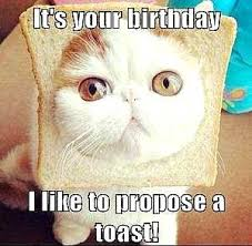Silly Birthday Meme - happy birthday sister meme funny birthday presents ideas