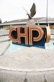 Chp Call Log by Chp Academy The News Ledger