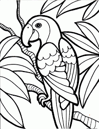 parrot free printable coloring pages