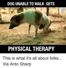 Physical Therapy Memes - 25 best memes about physical therapy physical therapy memes