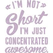 i m not i m concentrated awesome i m not i m just concentrated awesome t shirt spreadshirt