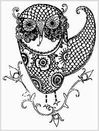 coloring pages of owls for adults chuckbutt com