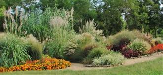 ornamental grass garden friends of the garden
