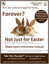 bunnies for easter easter awareness hoppy hearts rabbit rescue