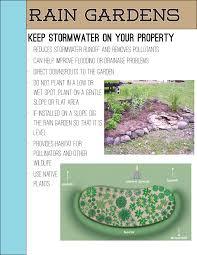 native plants for rain gardens lake county ohio stormwater management department u003e rain gardens