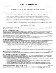 Resumes For Sales Executives Sales Manager Resume Sle 28 Images Resume For Marketing And