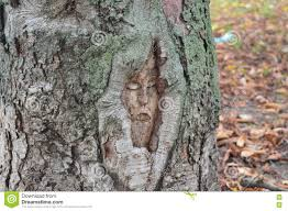 jesus on a tree stock photo image 80225448