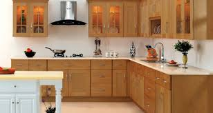 Kitchen Cabinets Pa Awed Kitchen Design Tags Kitchen Cabinets Pictures Kitchen Decor