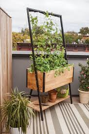 diy trellis ideas for your beautiful garden planters raising