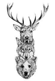 grey ink wildlife deer skull tattoo on shoulder photos pictures