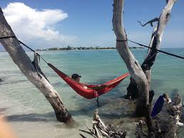 Eno Hammock Chair Grab Your Eno Hammock And Head To Pine Island Swfl Pine Island