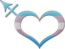 transgender pride heart shaped transgender symbol in matching