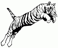 tiger coloring pages photo tiger coloring pages coloring