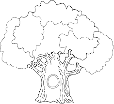 Coloring Page Of Tree Trunk Bare Tree Without Leaves Coloring Tree Coloring Pages