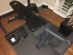 Leg Raise On Bench Leg Raise Buy Or Sell Exercise Equipment In Toronto Gta