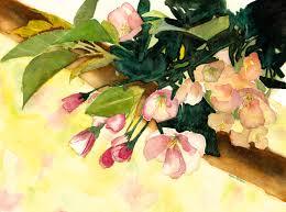 apple tree u2013 watercolors by lynn holbein
