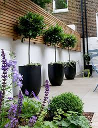 garden designer garden designer in bloom garden design hackney