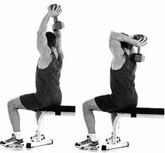 Bench Exercises With Dumbbells Dumbbell Exercises To Beef Up Your Triceps Men U0027s Health Singapore