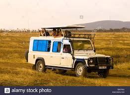 land rover safari roof tourists on safari peer out of the pop up roof of a safari vehicle