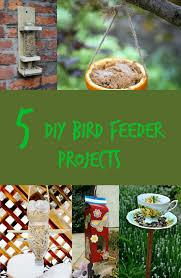 5 diy bird feeder projects discountqueens com
