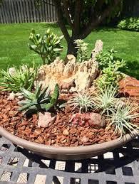 Rock Garden Bellevue I Will Be At The Bellevue Garden Club Boutique At Richmont