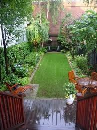 Small Backyard Landscaping Lose The Lawn Before And After In Palo Alto Asparagus Fern