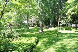 Landscaping Ideas For Backyard With Dogs by Garden Design Garden Design With Backyard Landscaping Ideas For