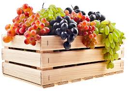 fruit boxes box for your produce