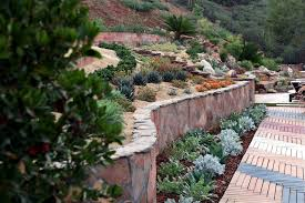 eclectic landscape and yard with succulents by singing gardens