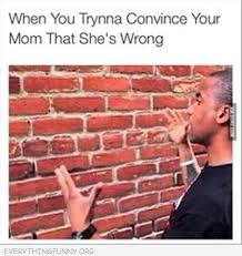 Brick Wall Meme - funny captions everything funny