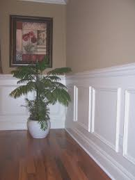 dining room cool dining rooms with wainscoting home decor
