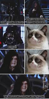 Star Wars Cat Meme - caturday happyhealthynoms