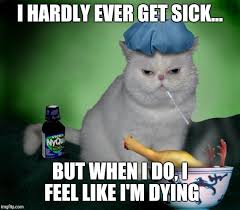 Sick In Bed Meme - sick cat memes imgflip